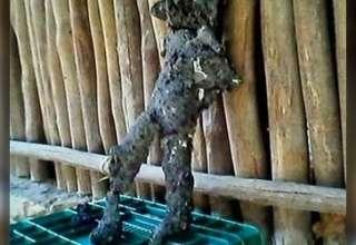 humanoide de yucatan 320x220 - Continúa el misterio del humanoide de Yucatán
