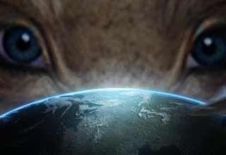 hillary clinton extraterrestres 320x220 - Hillary Clinton promete revelar la verdad sobre los ovnis y los extraterrestres si es elegida presidenta
