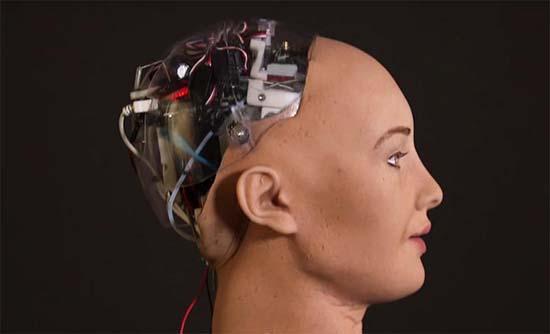 sophia robot amenaza destruir humanidad - Sophia, el robot que amenaza con destruir a la humanidad