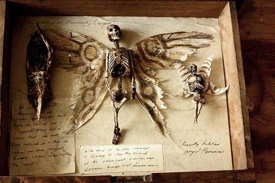 Cuerpos criaturas extrañas Londres