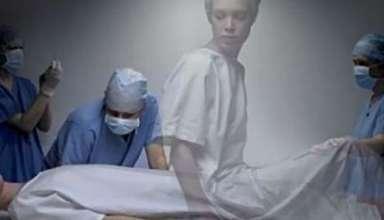 transmision almas trasplantes organos 384x220 - ¿La transmisión de almas se puede producir en los trasplantes de órganos?