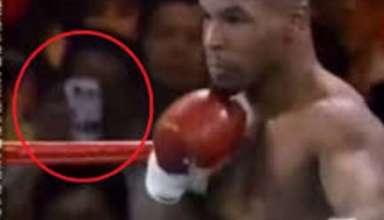 viajero tiempo boxeo 384x220 - Vídeo muestra un viajero del tiempo usando un teléfono con cámara del siglo XXI durante un combate de boxeo en 1995