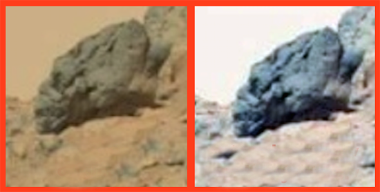 Cráneo alargado en Marte