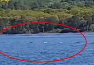 turista monstruo lago ness 320x220 - Turista logra grabar en vídeo parte del cuerpo del monstruo del lago Ness