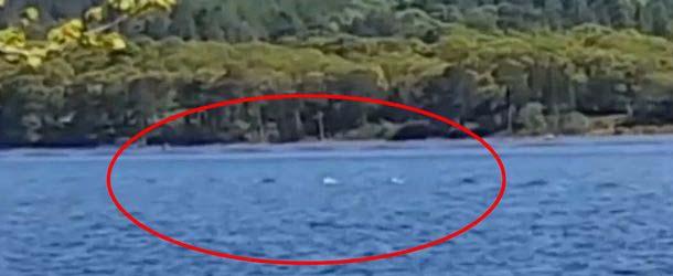turista monstruo lago ness - Turista logra grabar en vídeo parte del cuerpo del monstruo del lago Ness