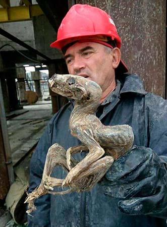 criatura momificada siberia - Mineros desentierran una monstruosa criatura momificada en Siberia