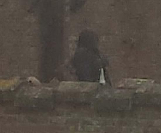 fantasma mujer castillo 15 - Fotografía muestra el fantasma de una mujer en un castillo del siglo 15