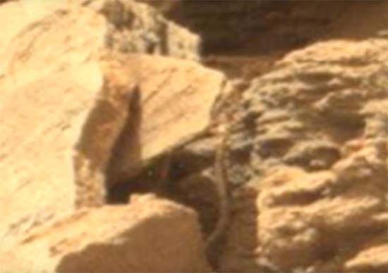 NASA serpiente extraterrestre Marte