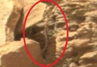 serpiente extraterrestre marte 320x220 - Rover de la NASA encuentra una serpiente extraterrestre en Marte