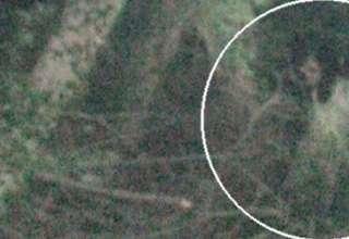 nina huerfana fantasma 320x220 - Una foto muestra una niña huérfana fantasma escondida en un bosque del Reino Unido
