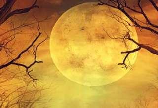 superluna caos 320x220 - Psíquica asegura que la Superluna provocará el caos
