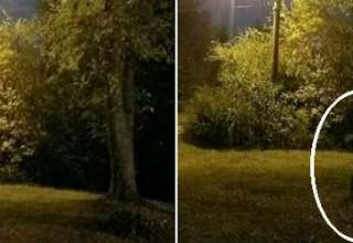misterioso ser durante luna llena 320x220 - Familia fotografía un misterioso ser durante la luna llena