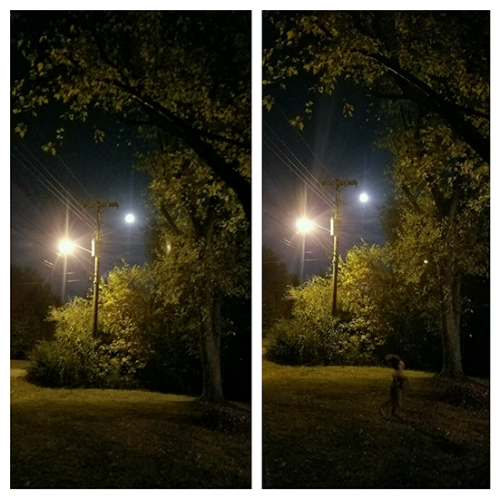 misterioso ser luna llena - Familia fotografía un misterioso ser durante la luna llena