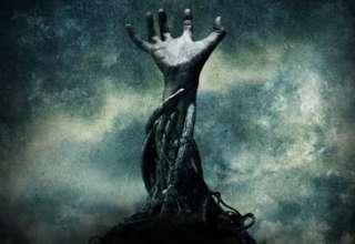 arboles asesinos 320x220 - Misteriosas y sobrecogedoras historias sobre árboles asesinos