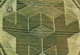 circulos cosechas extraterrestres 320x220 - Reconocido científico afirma que los círculos de las cosechas son mensajes dejados por extraterrestres o por viajeros del tiempo