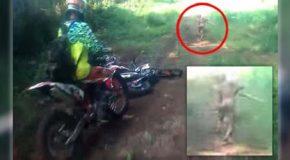 Motoristas tienen un encuentro con una criatura mutante en una selva de Indonesia