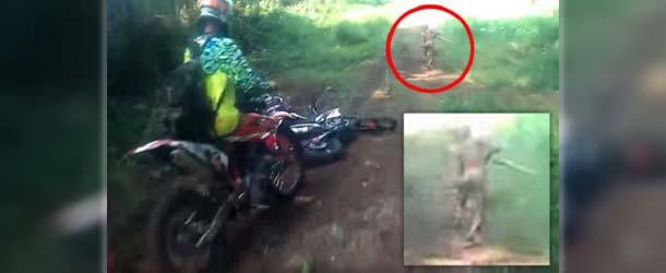 criatura mutante indonesia - Motoristas tienen un encuentro con una criatura mutante en una selva de Indonesia
