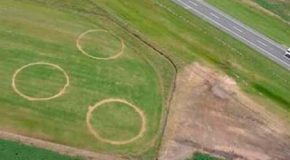 Científicos desconcertados por la aparición de extraños círculos en un campo de Argentina