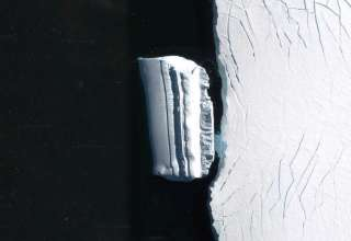 base extraterrestre iceberg 320x220 - Descubren una base extraterrestre en forma de iceberg cerca de la costa antártica