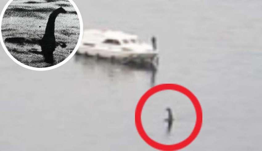 monstruo del lago ness 850x491 - Turista graba al monstruo del lago Ness después de ocho meses desaparecido