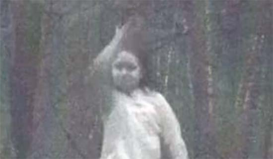 nina fantasma en bosque nueva york - Una cámara fija fotografía una niña fantasma en un bosque de Nueva York