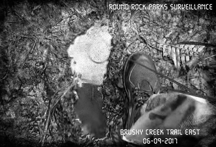 bigfoot en texas - Funcionarios del Departamento de Parques publican evidencias de la existencia del Bigfoot en Texas