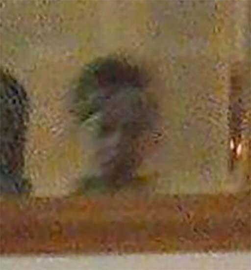 fantasma nino durante cumpleanos - Fotografían el fantasma de un niño durante un cumpleaños