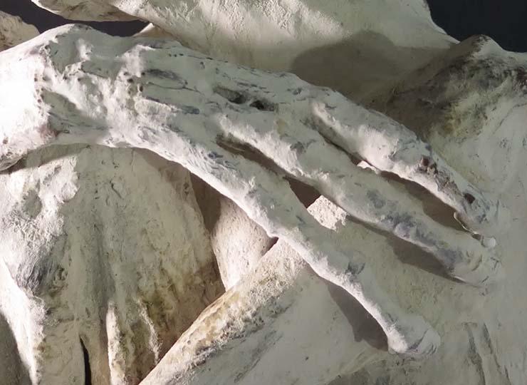 momia extraterrestre peru - Descubren una momia extraterrestre con tres dedos en Perú