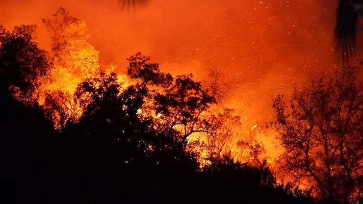ola de calor mortal - Advertencia apocalíptica: Expertos dicen que la ola de calor mortal puede acabar con el 75% de la humanidad