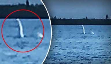 nessie lago rusia 384x220 - Fotografían un monstruo similar a Nessie en un lago de Rusia