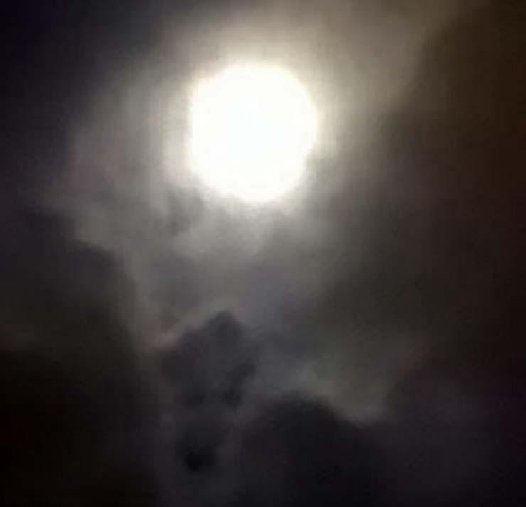 rostro perro fallecido - Una mujer ve el rostro de su perro fallecido en una fotografía que hizo a la luna llena