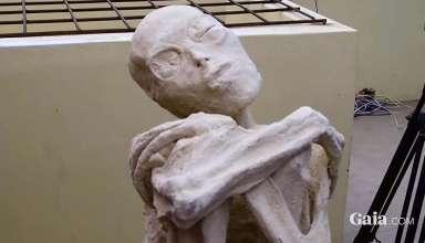 criaturas momificadas peru 384x220 - Científico ruso asegura que las criaturas momificadas de tres dedos halladas en Perú son extraterrestres