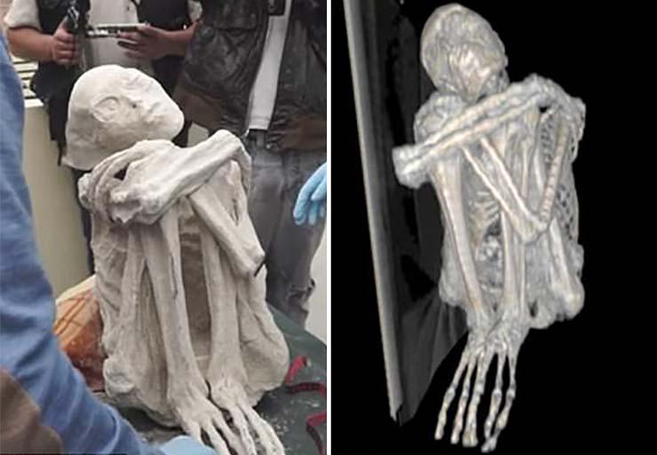 criaturas momificadas tres dedos - Científico ruso asegura que las criaturas momificadas de tres dedos halladas en Perú son extraterrestres
