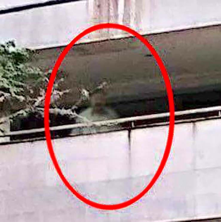 fantasma de pablo escobar - Fotografían el fantasma de Pablo Escobar en el edificio donde vivía