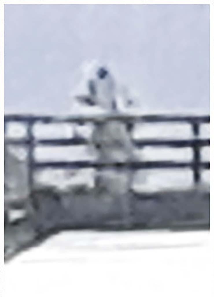 humanoide astronauta lago ness - Fotografían un humanoide similar a un astronauta sobre un puente en lago Ness
