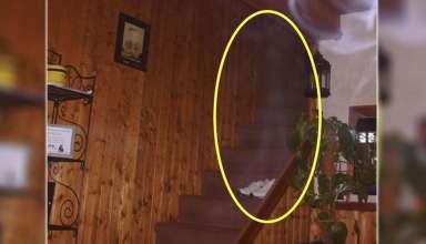 familia actividad paranormal 384x220 - Familia inglesa graba escalofriante actividad paranormal en su casa