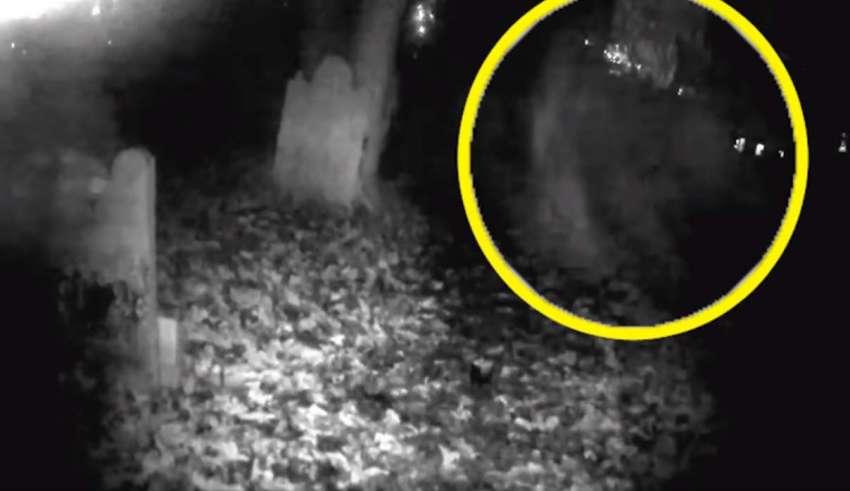 forma fantasmal cementerio 850x491 - Graban el espeluznante momento en que se materializa una forma fantasmal en un cementerio de Inglaterra