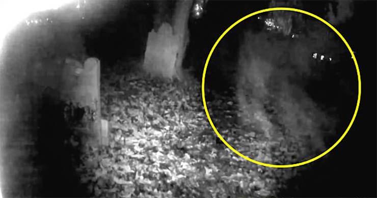 forma fantasmal cementerio inglaterra - Graban el espeluznante momento en que se materializa una forma fantasmal en un cementerio de Inglaterra