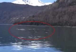 monstruo lago kanas 320x220 - Turistas graban el legendario monstruo del lago Kanas en China
