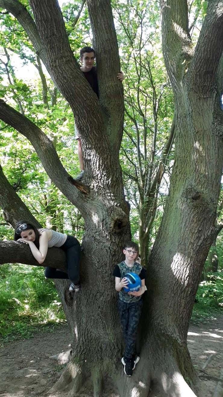 nino fantasma hijo bosque inglaterra - Una madre fotografía un siniestro niño fantasma detrás de su hijo de nueve años en un bosque de Inglaterra