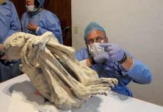 momia extraterrestre peru 320x220 - Investigador británico asegura que la momia extraterrestre de tres dedos de Perú es una nueva especie humana