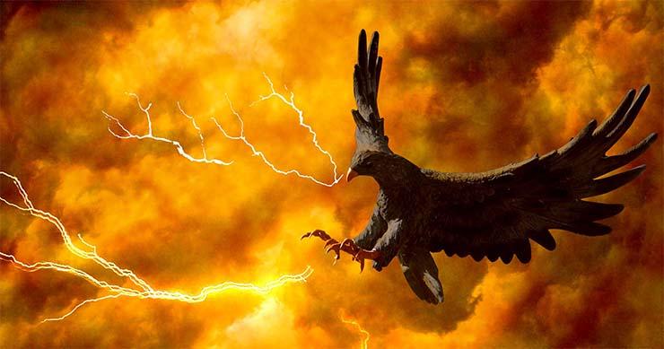ave mitologica yellowstone grietas - Avistamiento de un ave mitológica en Yellowstone días antes del cierre de un área cercana por nuevas grietas