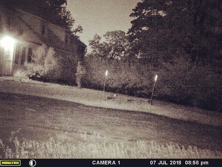 fantasma de un soldado - Una cámara capta el momento en que el fantasma de un soldado regresa a su antigua casa