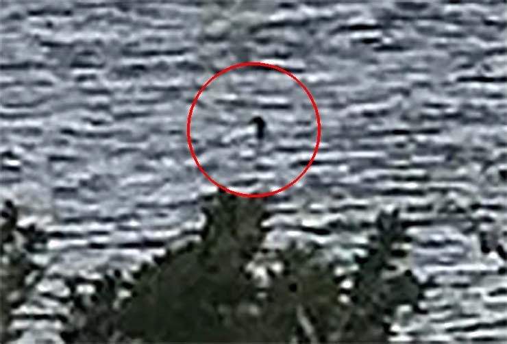 foto monstruo lago ness - Una niña toma la mejor foto del monstruo del lago Ness de la historia