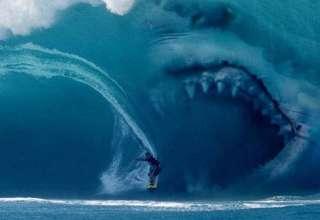 megalodon 320x220 - Evidencias que demuestran que el Megalodón existe en nuestros océanos