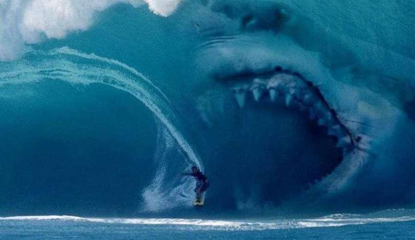 megalodon 850x491 - Evidencias que demuestran que el Megalodón existe en nuestros océanos