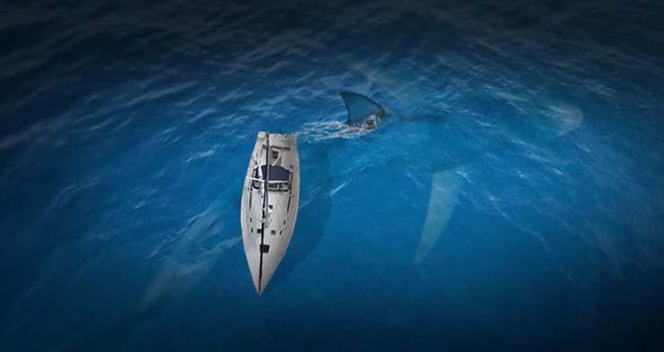 megalodon oceanos - Evidencias que demuestran que el Megalodón existe en nuestros océanos
