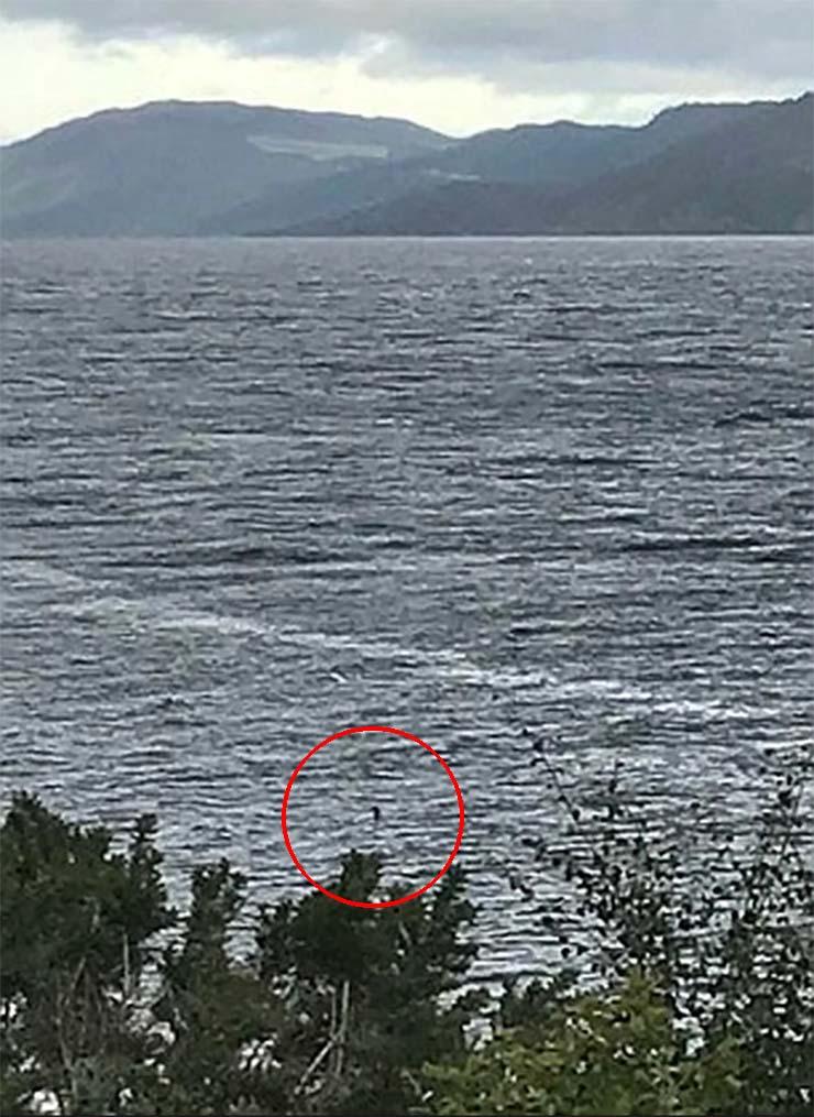 mejor foto monstruo lago ness - Una niña toma la mejor foto del monstruo del lago Ness de la historia