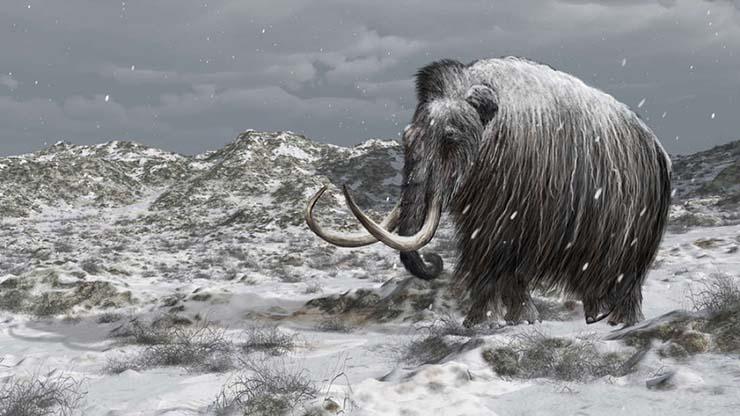 jurassic park real siberia - Vladímir Putin creará un Jurassic Park real en Siberia