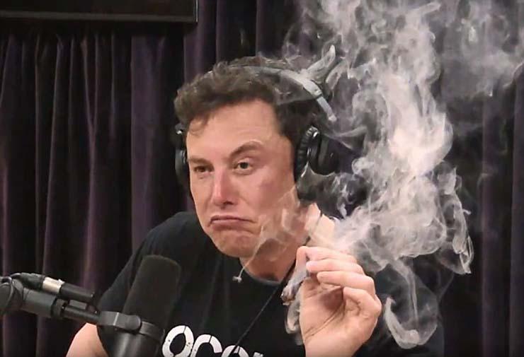 musk matrix - Elon Musk está convencido de que vivimos en Matrix